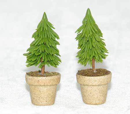 Mini pine trees in pot (2)