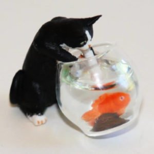 Black and white cat into fish bowl