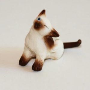 Siamese cat scratching