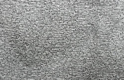 Pebble/stone paper