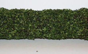 Green hedge fencing-small