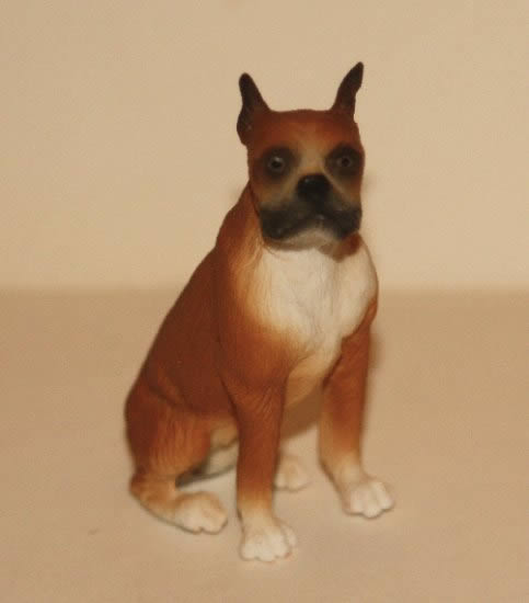 Boxer, sitting
