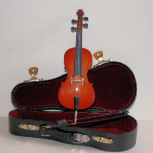 Cello and bow in case