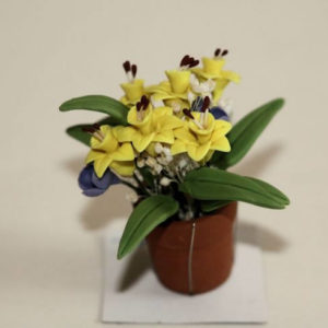 Pot plant with yellow jonquils