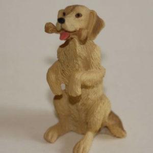 Labrador sitting dog with bone