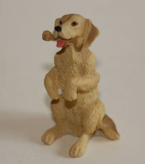 Labrador sitting dog with bone