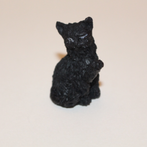 Black sitting cat
